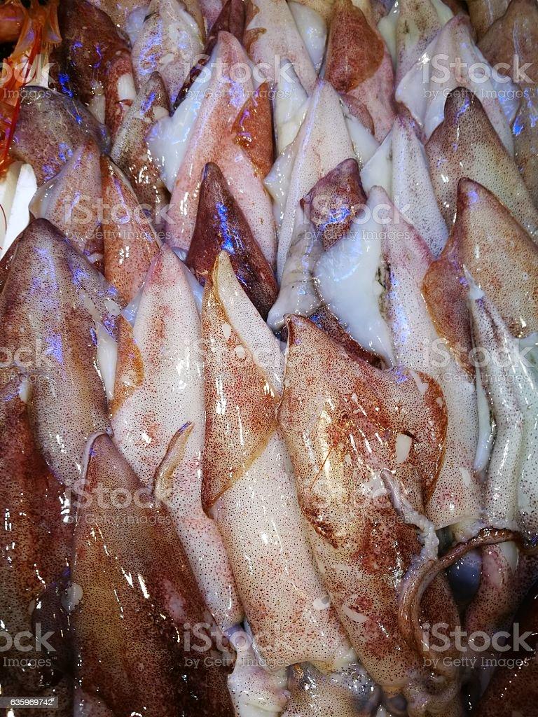Fresh squid in fish market stock photo