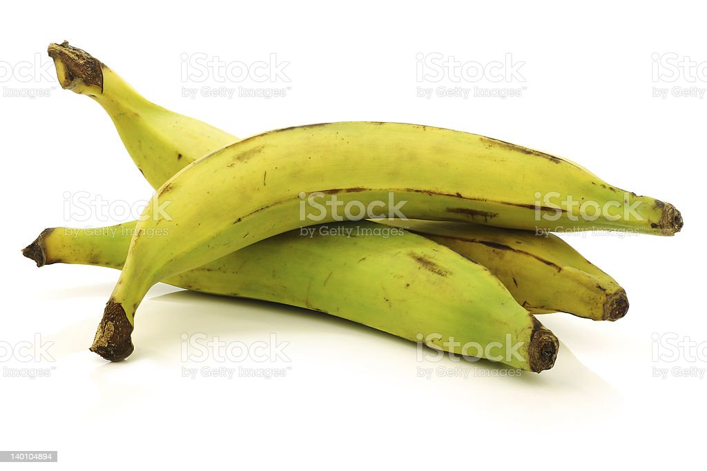 fresh still unripe plantain (baking) bananas stock photo