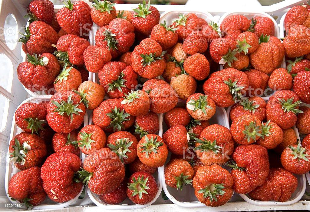 Fresh Strawberries at Market Venice royalty-free stock photo