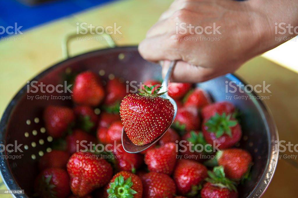 Fresh strawberries in a sieve stock photo
