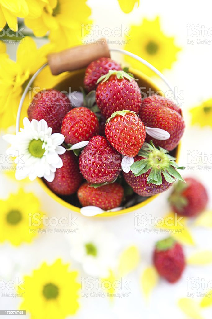 Fresh strawberries  in yellow bucket royalty-free stock photo