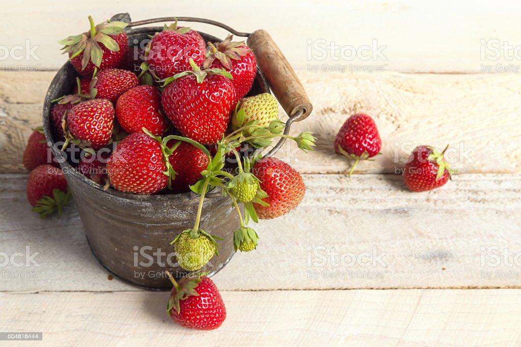fresh strawberries season stock photo