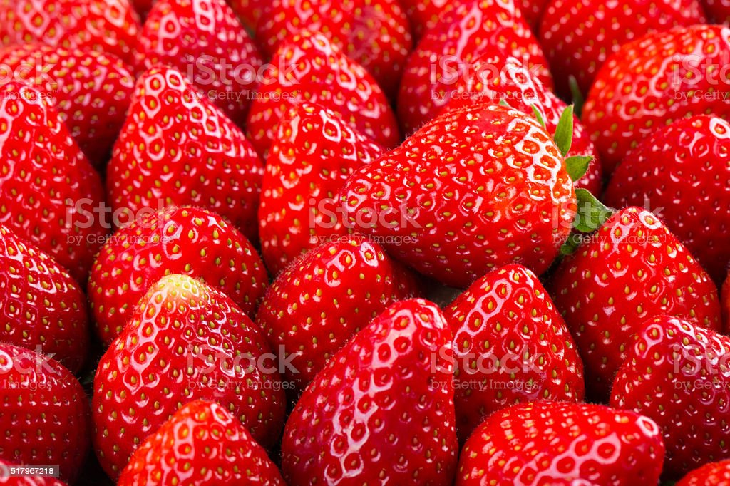 Fresh strawberry background stock photo