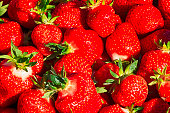 Fresh strawberry background. ProPhotoRGB colors.