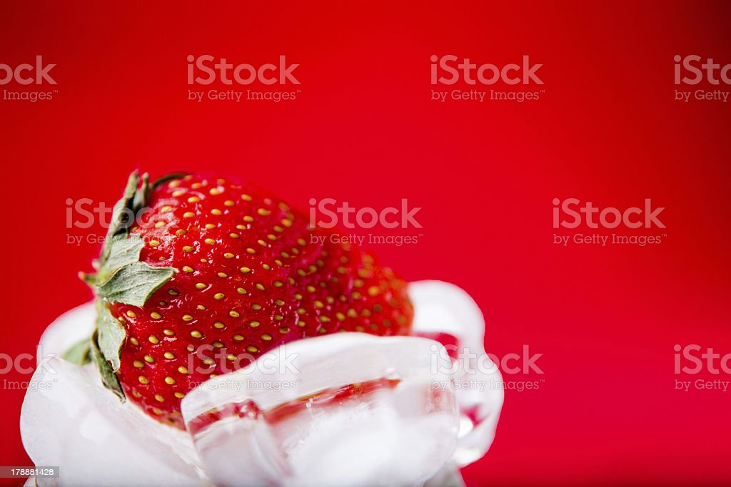 fresh strawberry in white ice on red background royalty-free stock photo