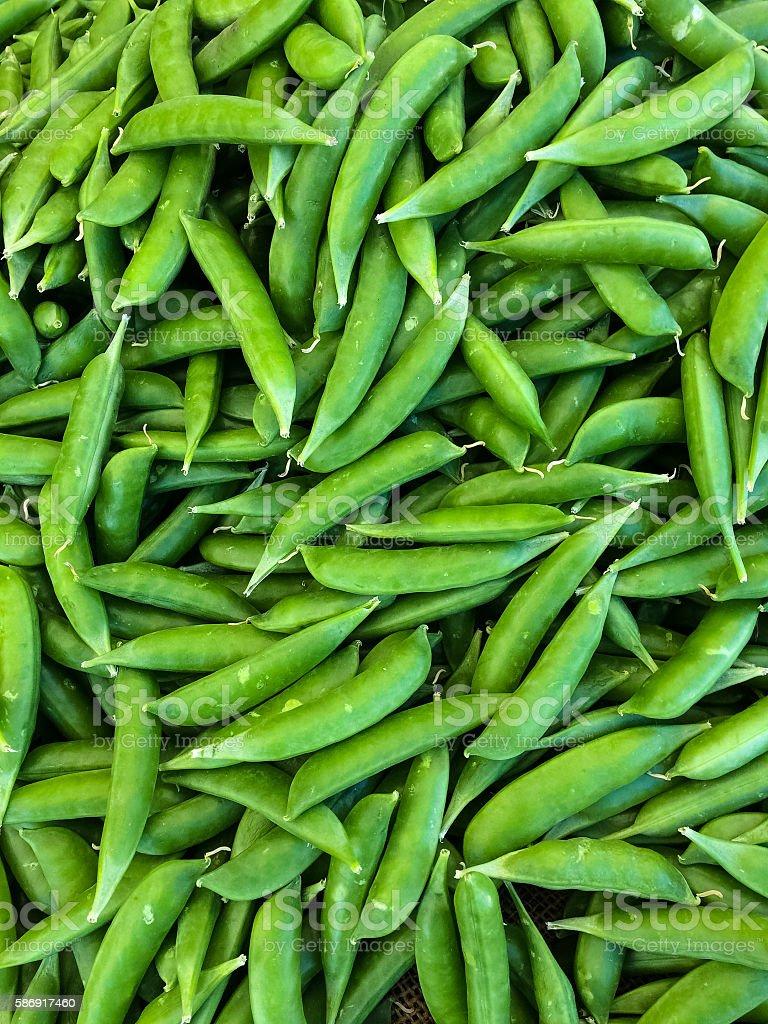 Fresh Sugar Snap Peas stock photo