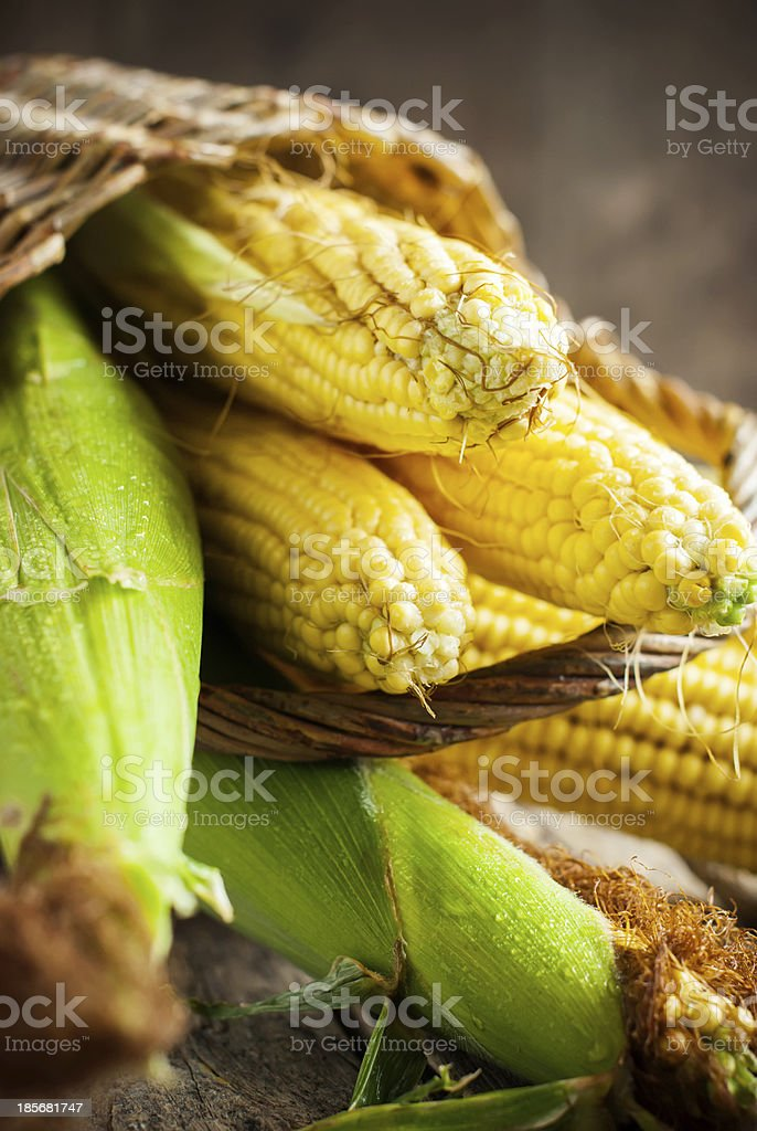 Fresh Sweet Corn on the wooden table, selective focus royalty-free stock photo