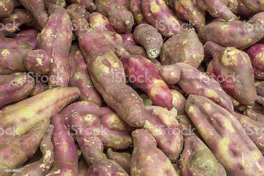 Fresh sweet potatoes royalty-free stock photo