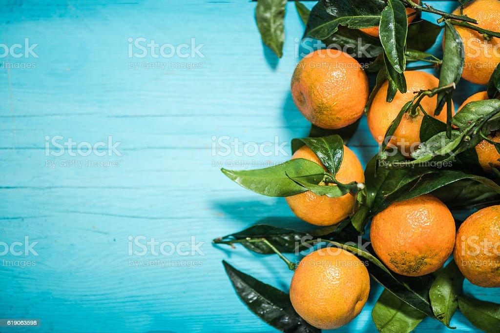 Tangerine encyclopedia tangerine online india booking