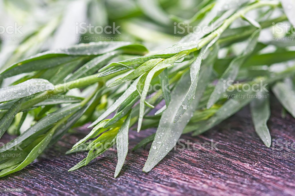 Fresh tarragon on wooden cutting board stock photo
