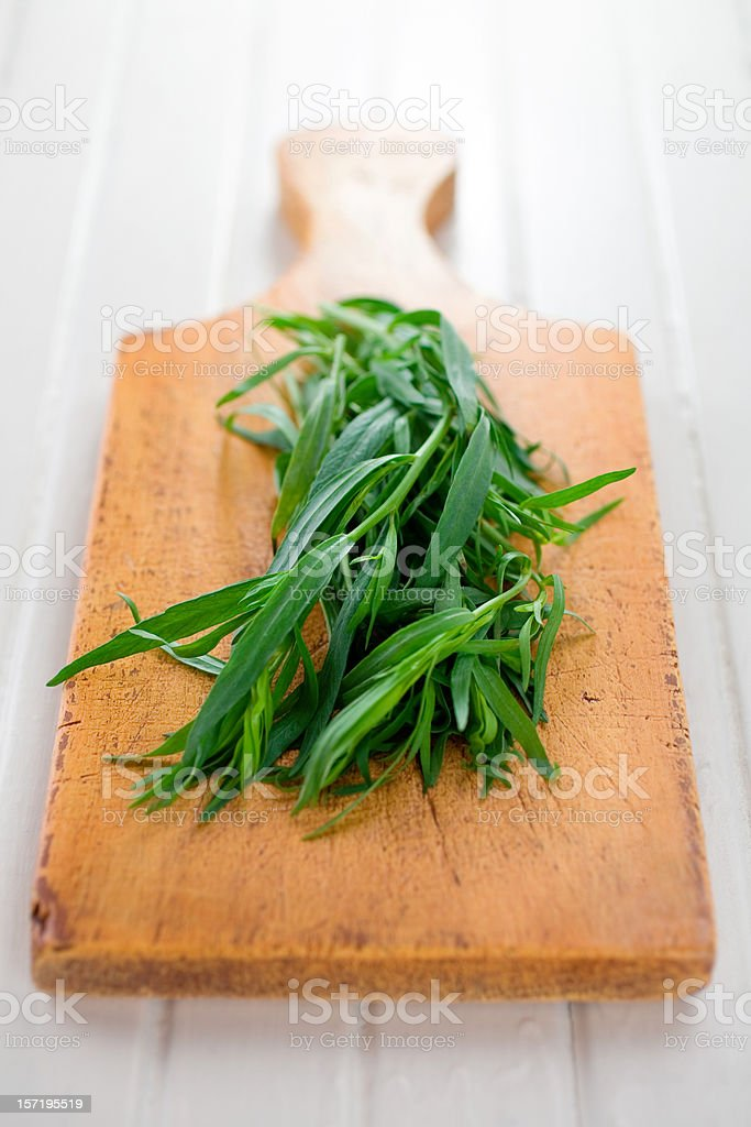 Fresh Tarragon stock photo