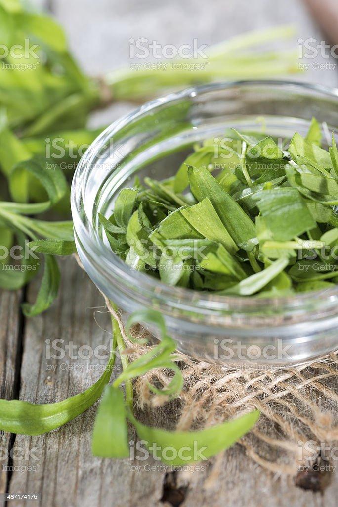 Fresh Tarragon stock photo