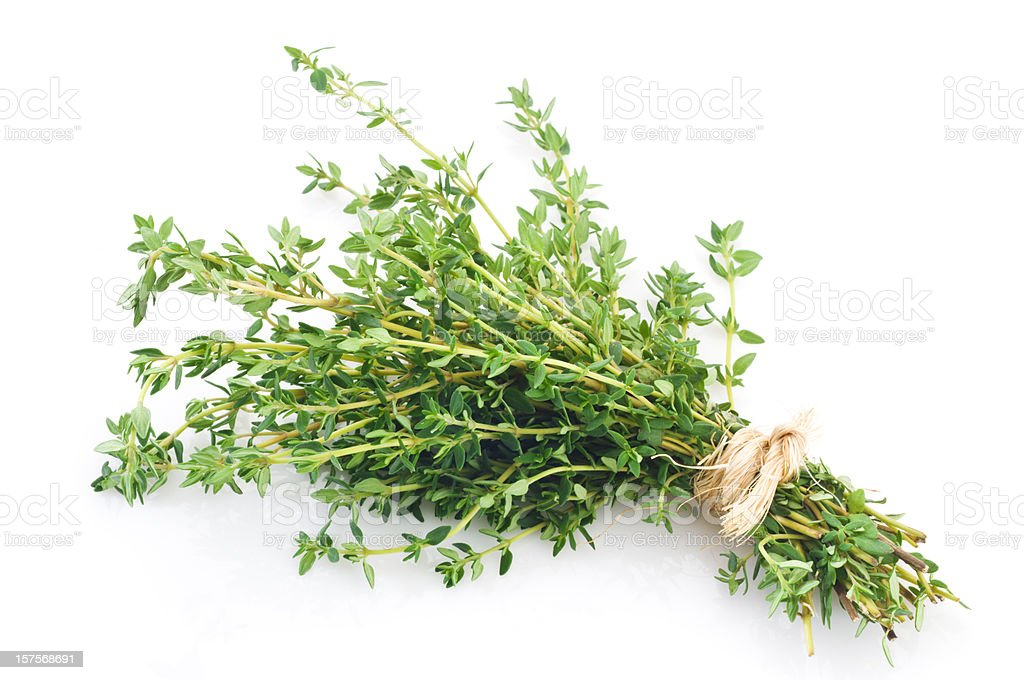 Fresh thyme bunch tied up shot on white backdrop stock photo