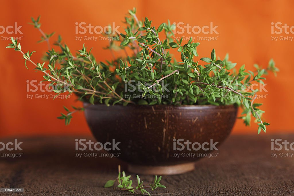 Fresh thyme in a wooden bowl close up stock photo