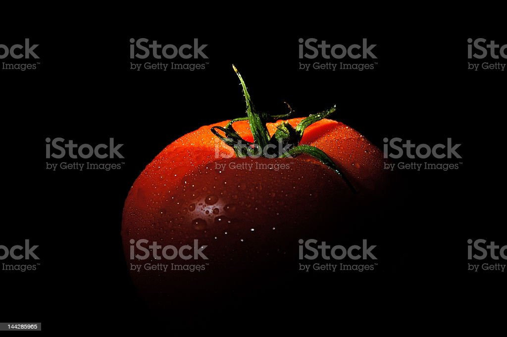 Fresh tomato with water drops royalty-free stock photo