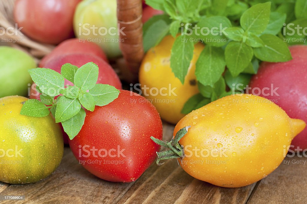 Tomates fraîches, basilic photo libre de droits