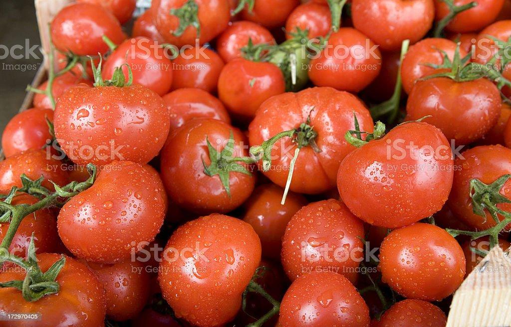 Fresh Tomatoes at Market royalty-free stock photo