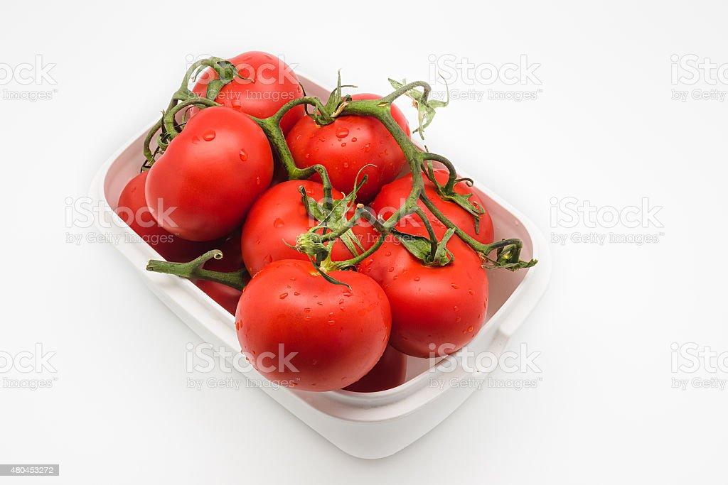 "Tomates frescos na vinha isolada no branco "" foto royalty-free"