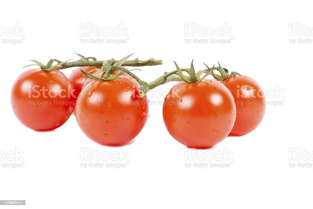 Fresh tomatoes on white background royalty-free stock photo