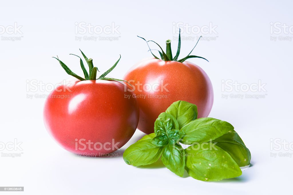 fresh tomatoes with basil stock photo