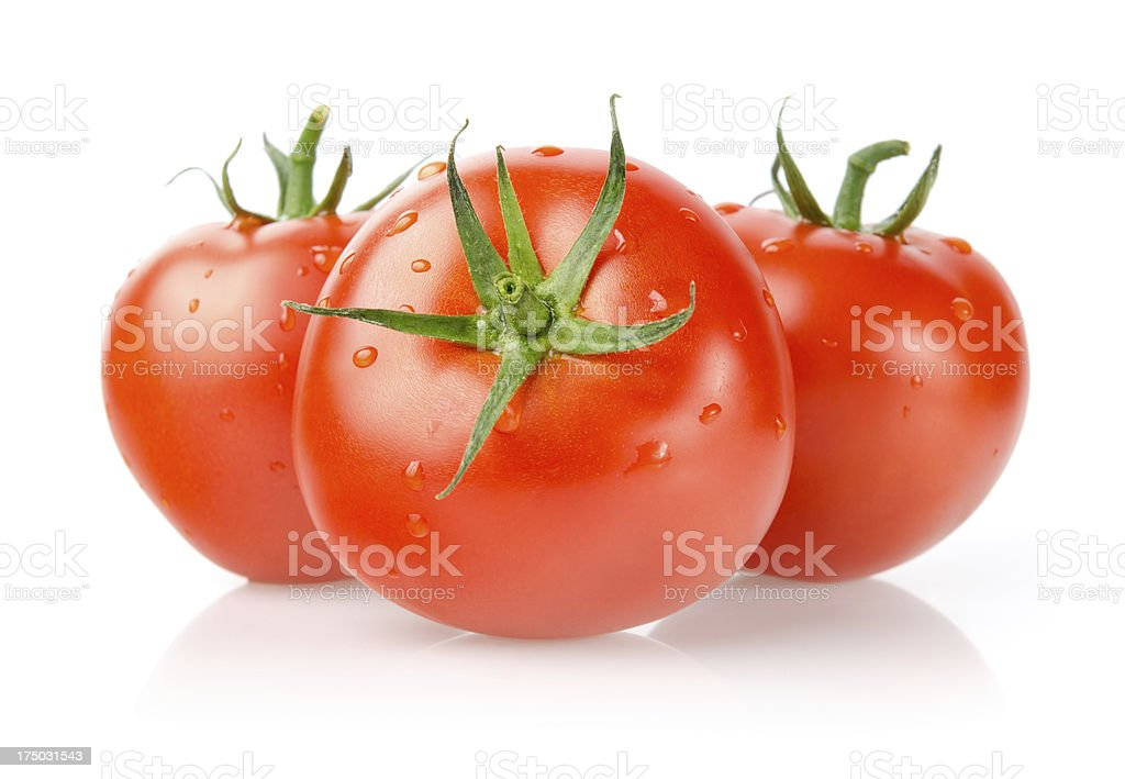 Fresh Tomatoes with Drops royalty-free stock photo