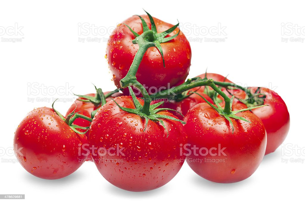 Fresh Tomatoes with drops stock photo