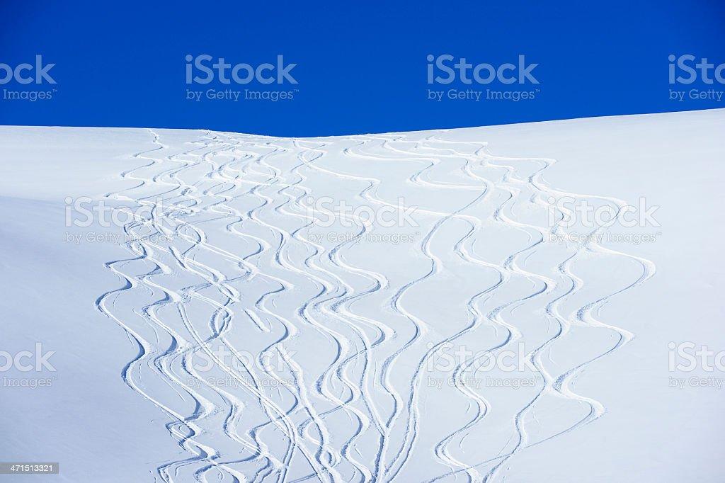 Fresh Tracks royalty-free stock photo
