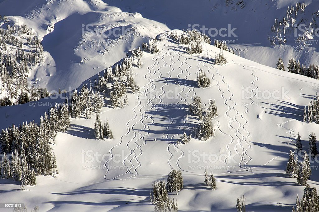 Fresh tracks stock photo
