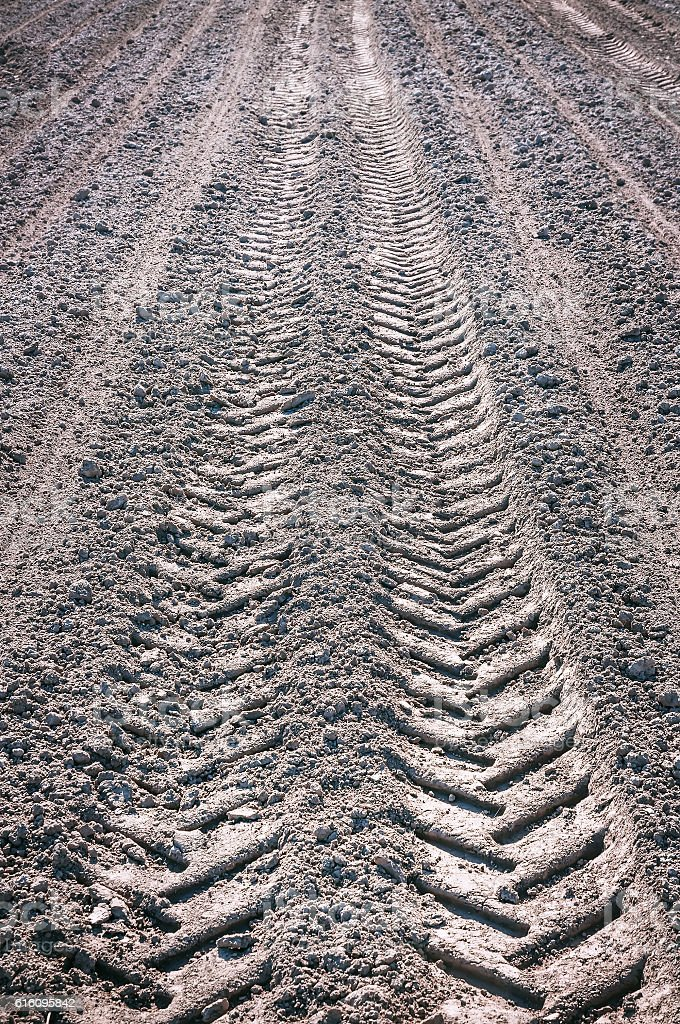 fresh tractor trace stock photo