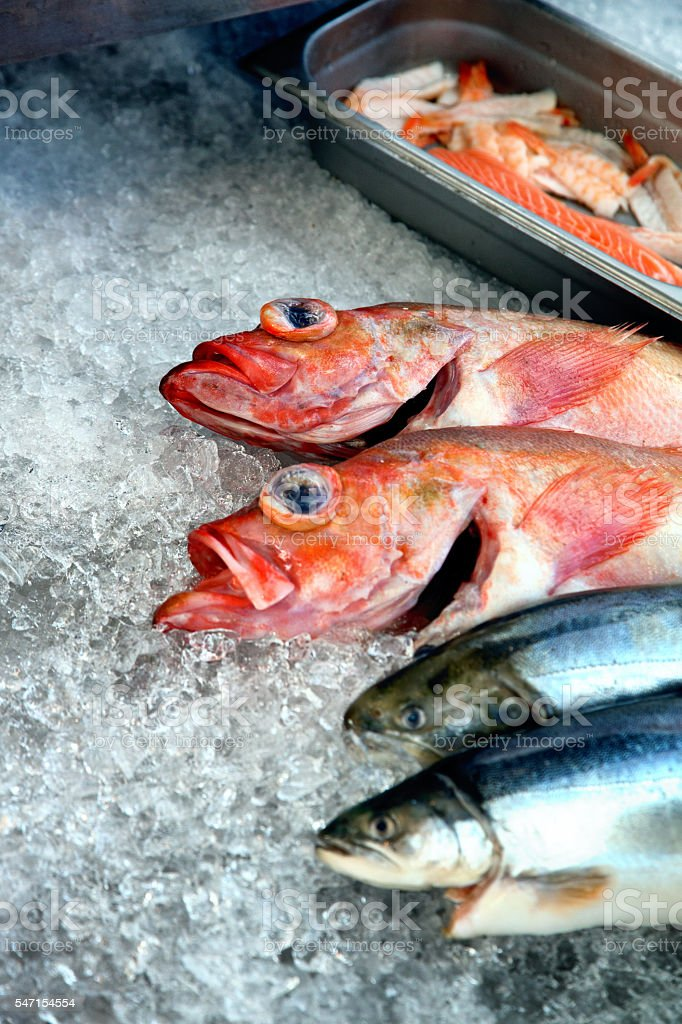 Fresh Trout And Red Snapper On Ice stock photo