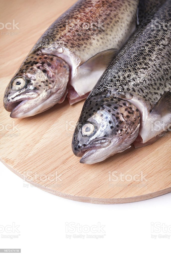 Fresh trout royalty-free stock photo
