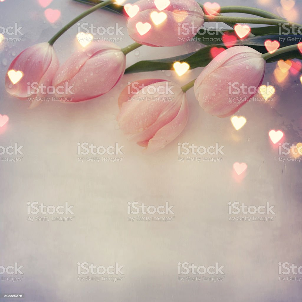 Fresh tulips, greeting card for wedding day stock photo