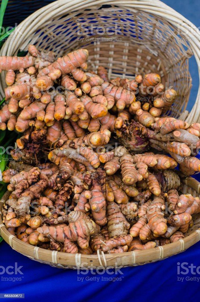 Fresh tumeric root in basket stock photo