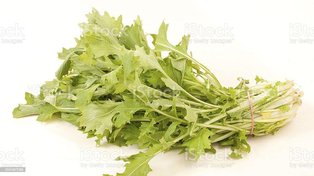 fresh turnip greens royalty-free stock photo