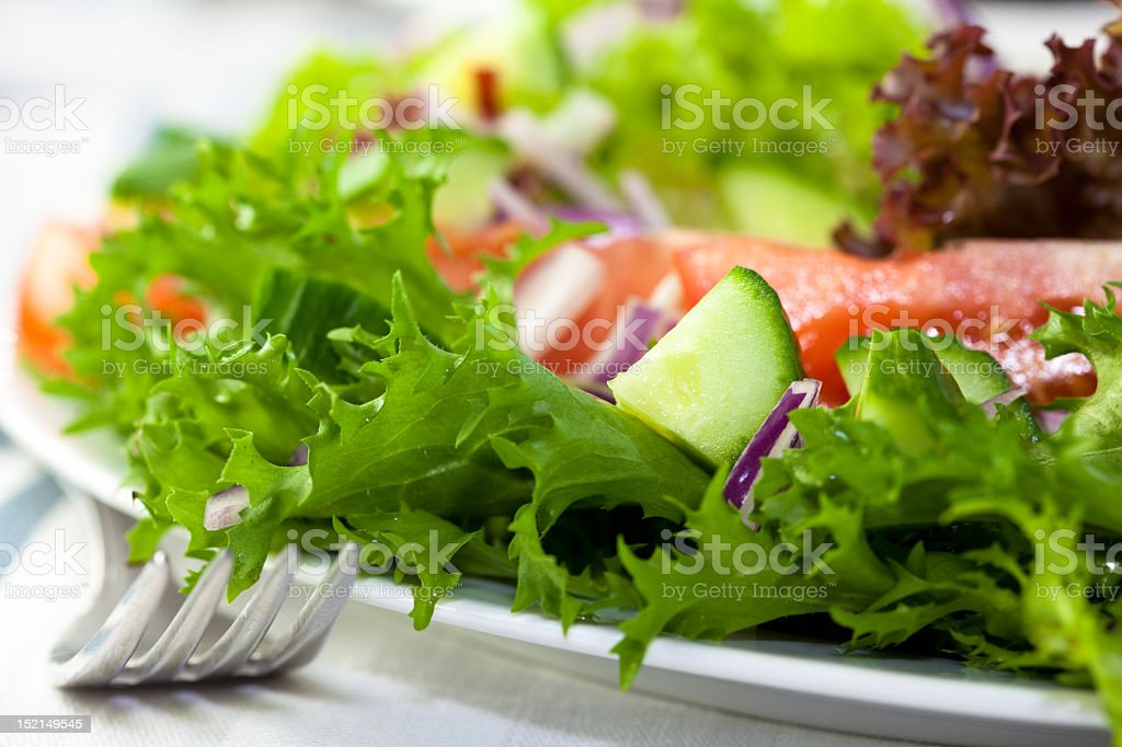 Fresh vegetable salad royalty-free stock photo