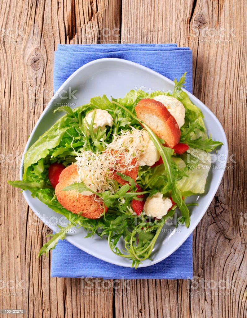 Fresh vegetable salad with crostini stock photo