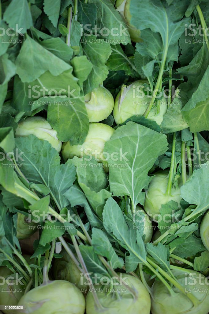 fresh vegetables - kohlrabi stock photo