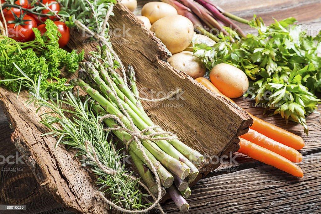 Fresh vegetables on bark stock photo