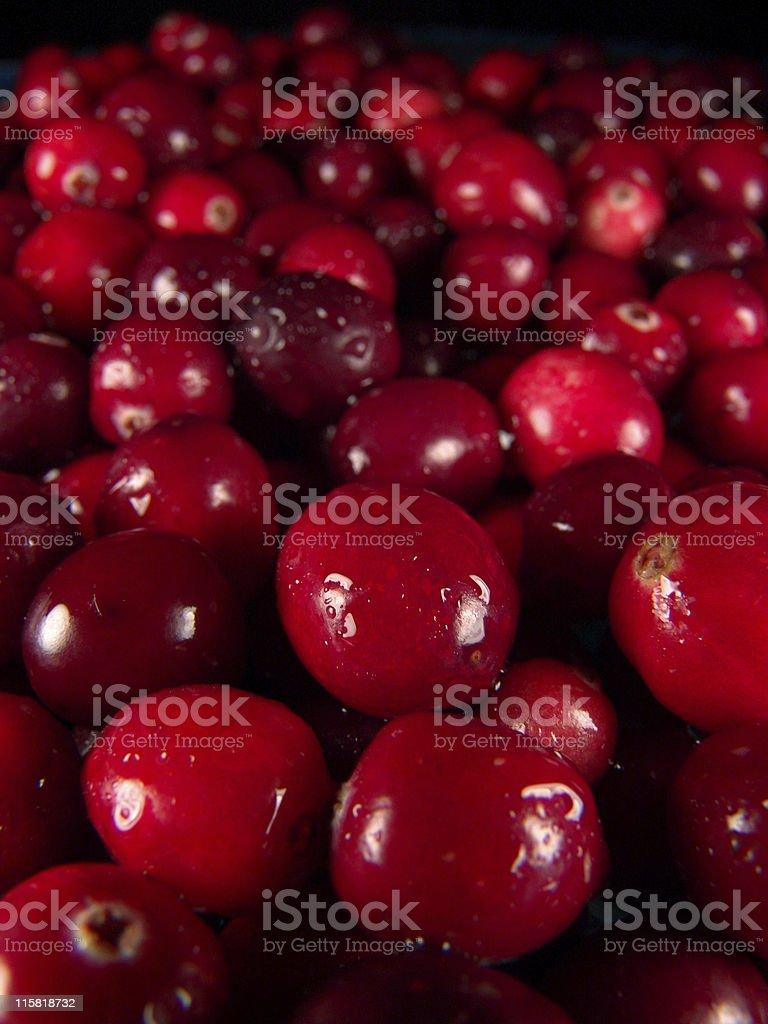 Fresh Veggies, Cranberries royalty-free stock photo