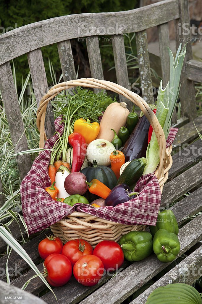 fresh vegtable basket on rustic bench stock photo