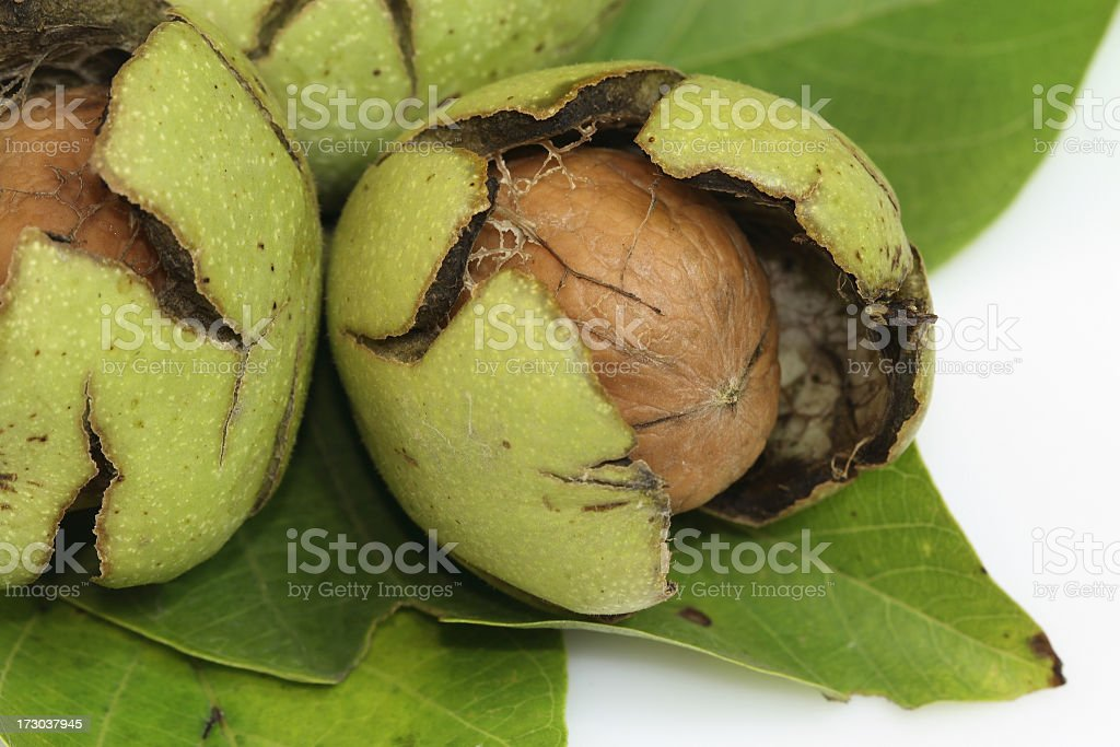 Fresh Walnuts composition royalty-free stock photo