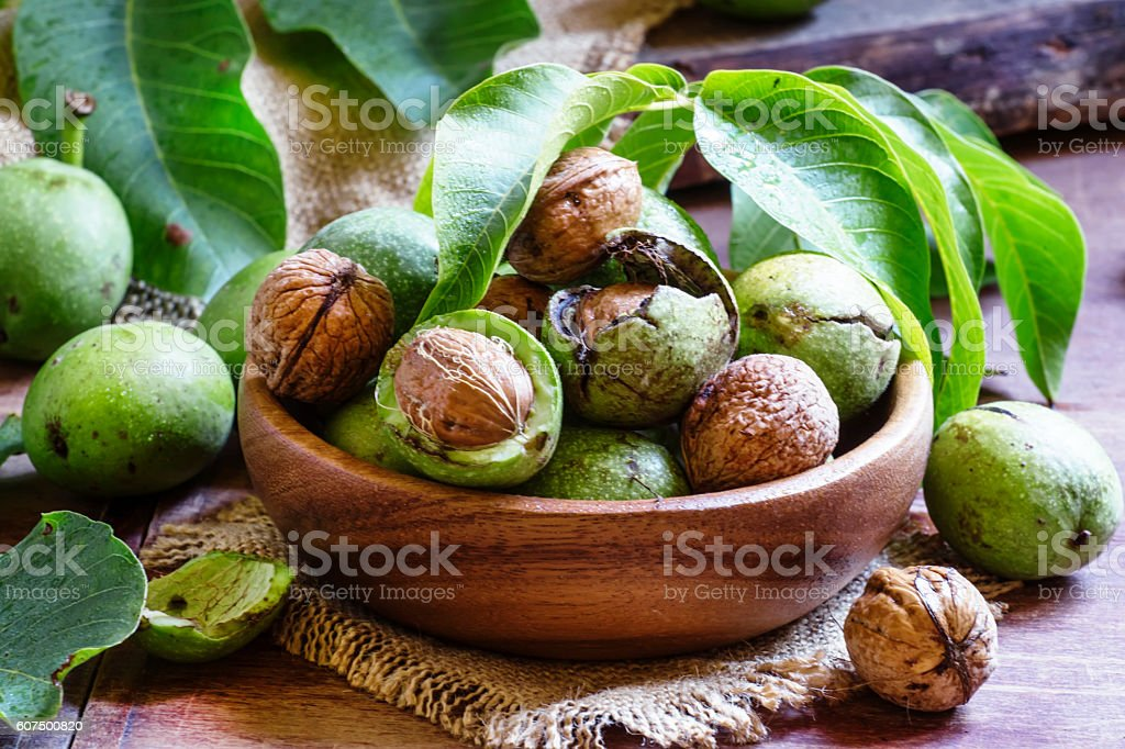 Fresh walnuts in a green shell stock photo