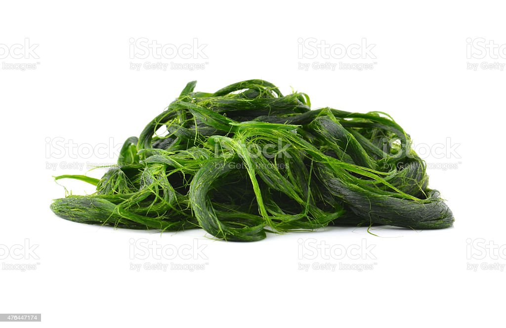 Fresh - water algae ready is used to make food. stock photo