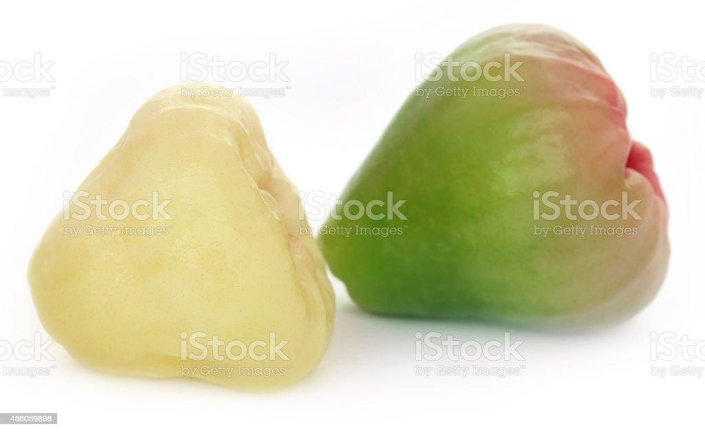 Fresh water apple or rose apple stock photo