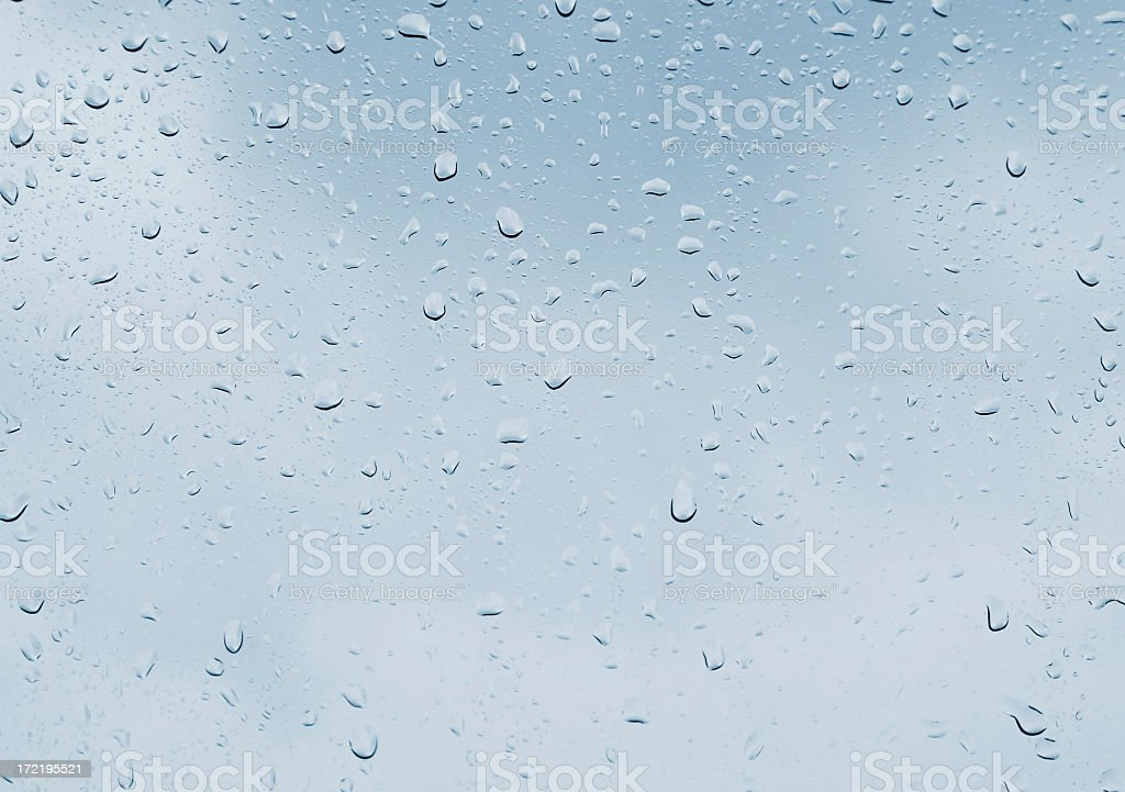 Fresh water drops after the rain royalty-free stock photo