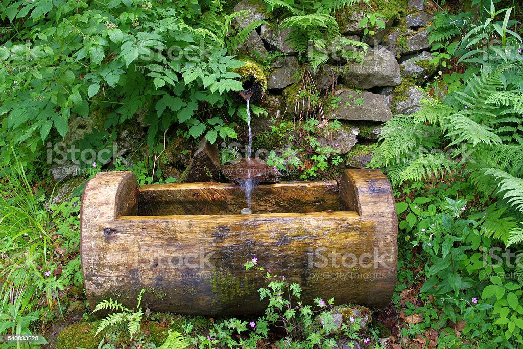 Fresh water Fountain in thicket of bushes. beautiful landscape stock photo