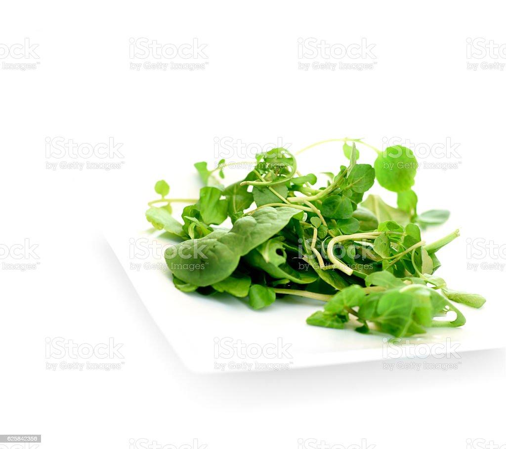 Fresh Watercress Salad stock photo