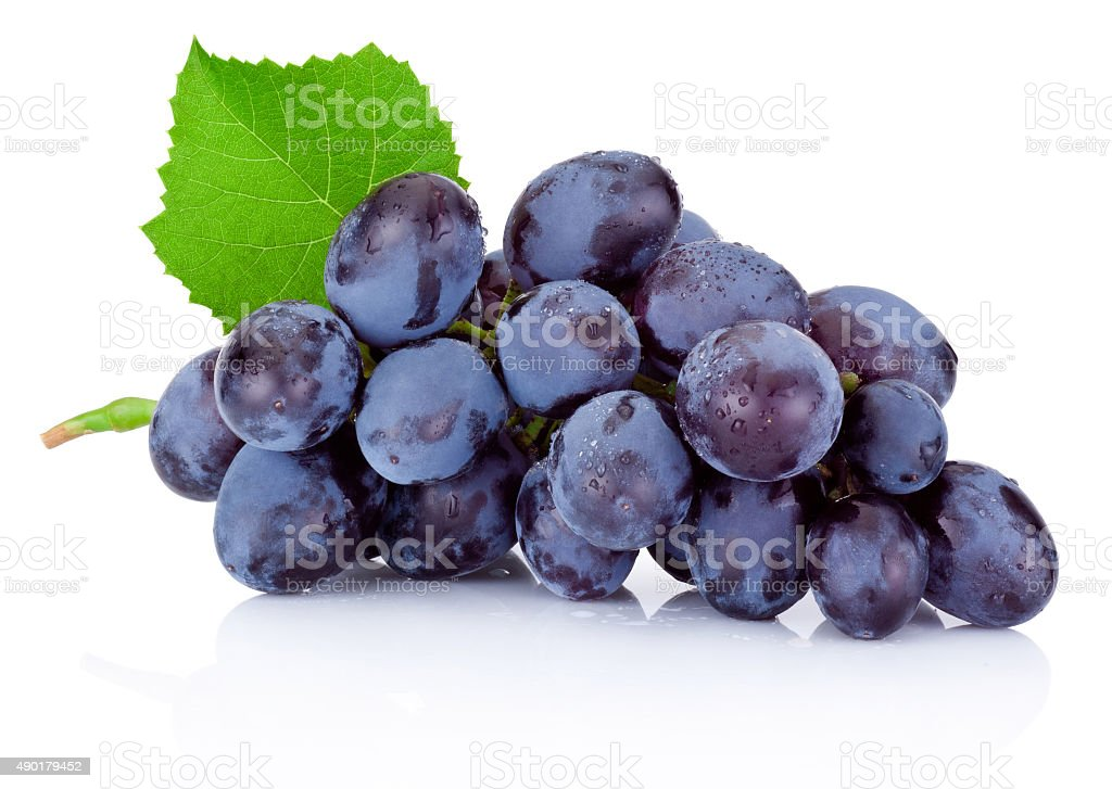 Fresh wet blue grapes with green leaf isolated on white stock photo
