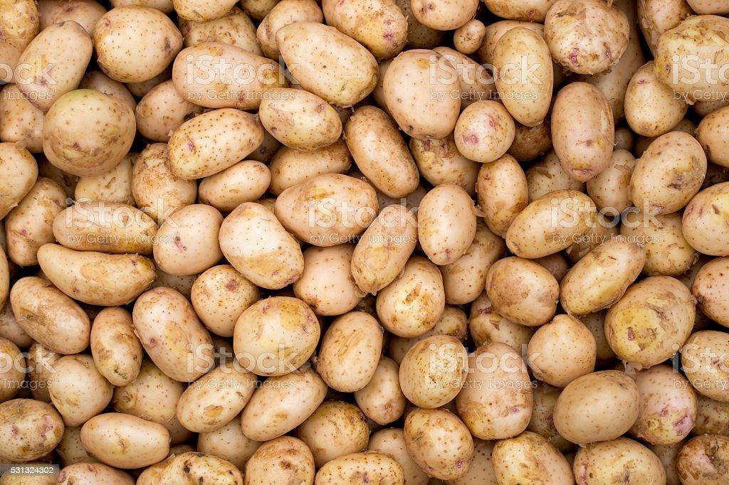 Fresh  whole potatoes on a background stock photo