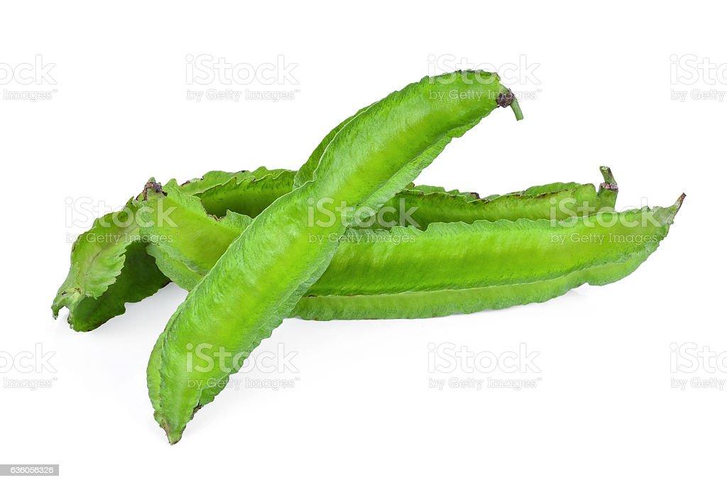 fresh Winged Beans, Psophocarpus tetragonolobus isolated on whit stock photo